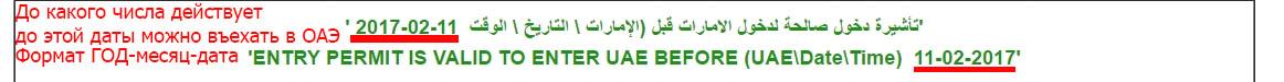 Проверяем статус визы ОАЭ